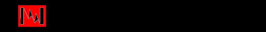 Logo Nippon Seisen